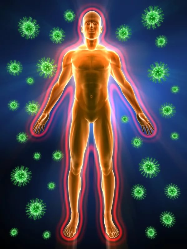 immune system and music